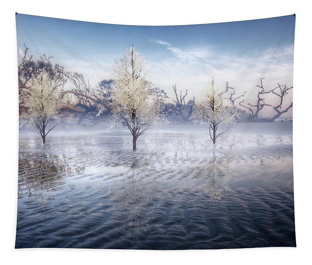 Clouds Tapestry featuring the photograph Wintery Coast by Debra and Dave Vanderlaan