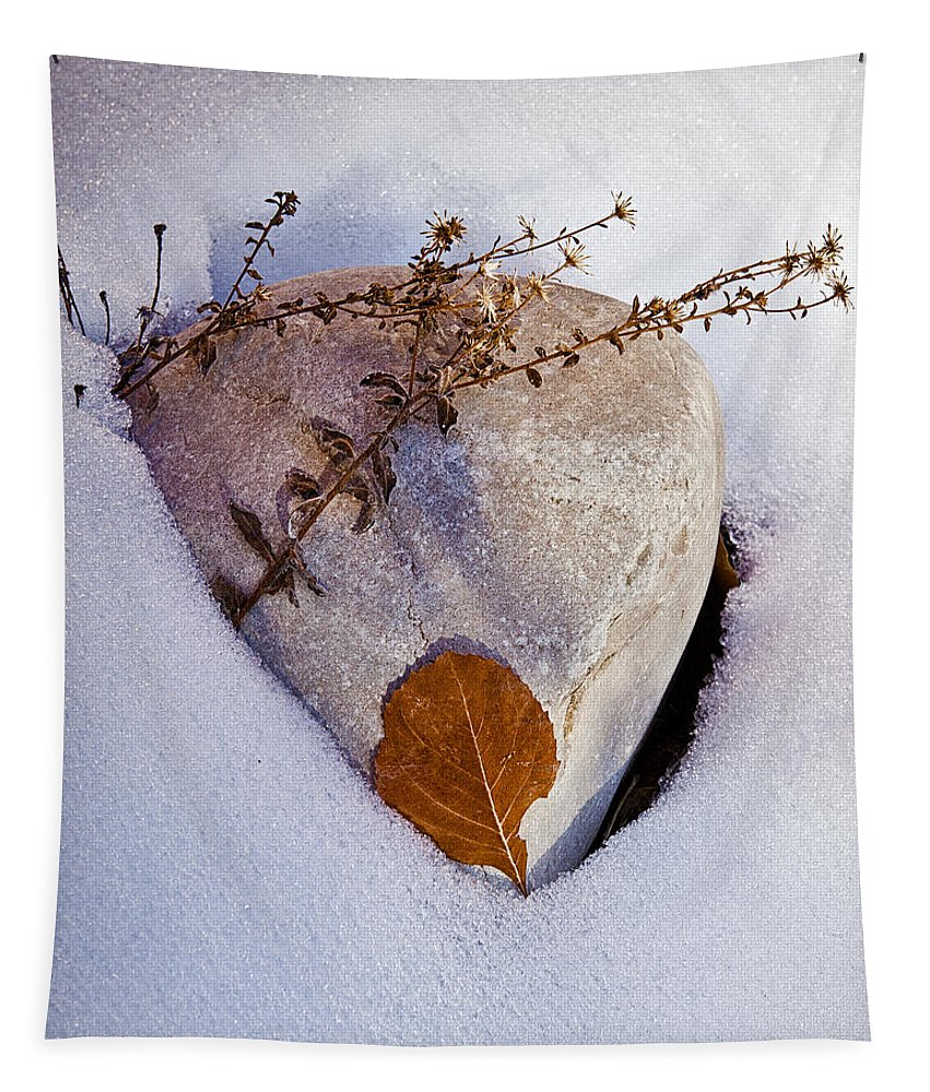 Rock Tapestry featuring the photograph Wintery Still Life by Christopher Holmes