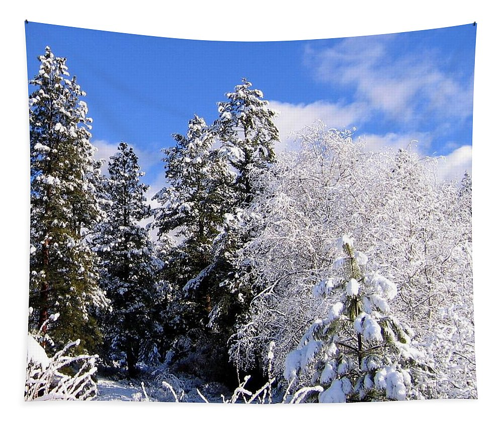 Winter Tapestry featuring the photograph Wintry Morn by Will Borden