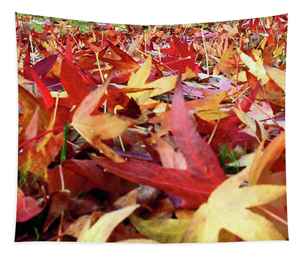 Fall Leaves Tapestry featuring the photograph Wishing For Fall by Davids Digits