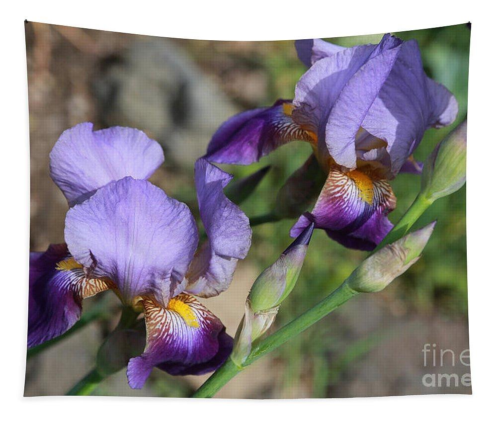 Iris Tapestry featuring the photograph Wonderful Purple Irises by Carol Groenen