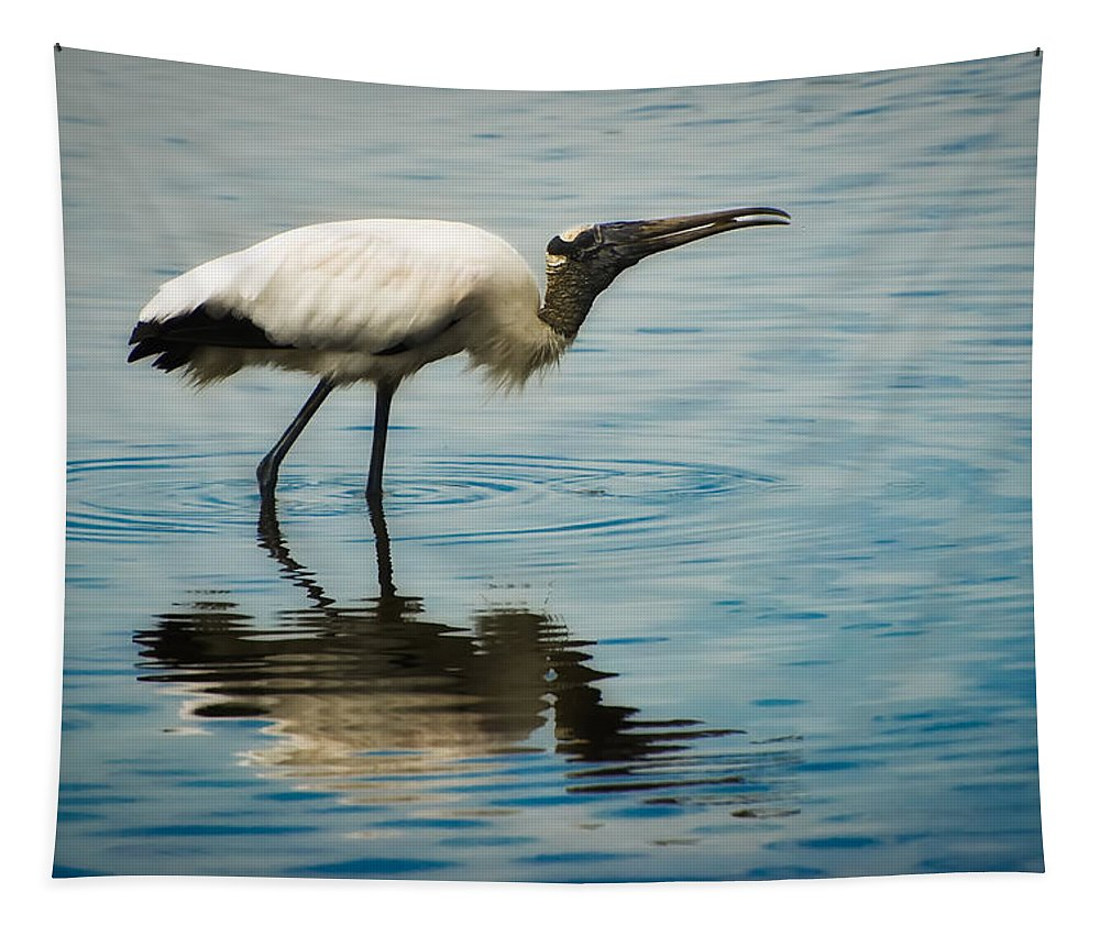 Stork Tapestry featuring the photograph Wood Stork by Rich Leighton