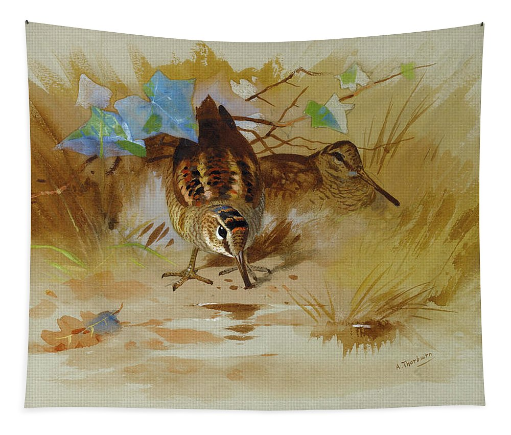 Woodcock Tapestry featuring the mixed media Woodcock In A Sandy Hollow By Thorburn by Archibald Thorburn