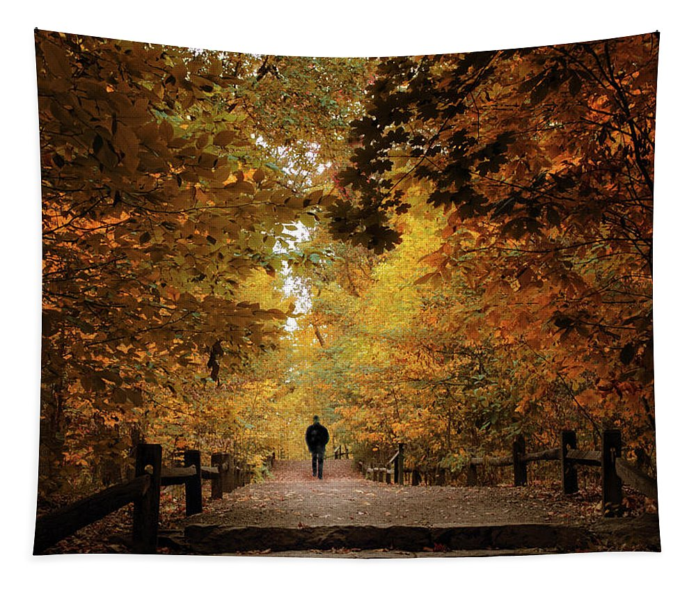 Forest Tapestry featuring the photograph Woodland Promenade by Jessica Jenney