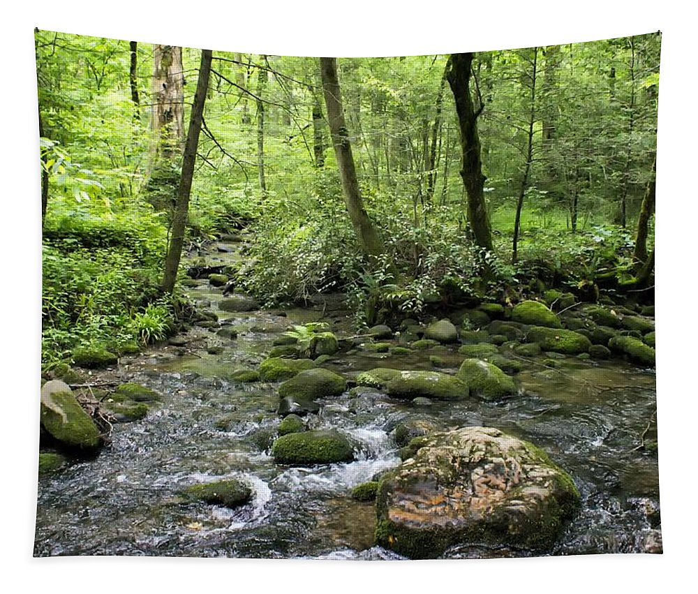 Woods Tapestry featuring the photograph Woods - Creek by Nikolyn McDonald