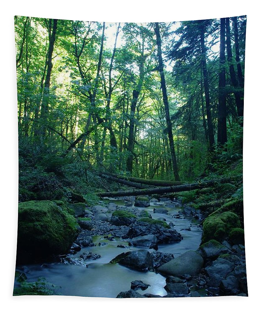 Water Tapestry featuring the photograph Wyeth Creek by Jeff Swan