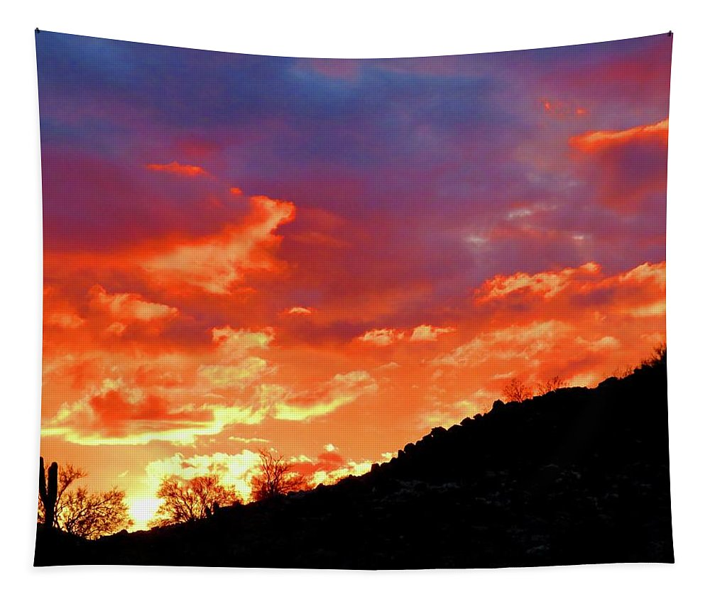 Arizona Tapestry featuring the photograph Y Cactus Sunset 6 by Judy Kennedy