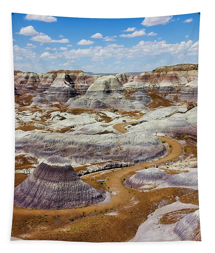 Painted Desert Tapestry featuring the photograph Yea Though I Walk by Skip Hunt