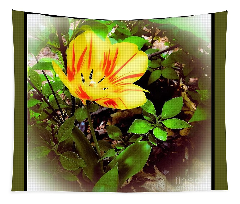 Yellow Tapestry featuring the photograph Yellow And Red Tulip by Debra Lynch