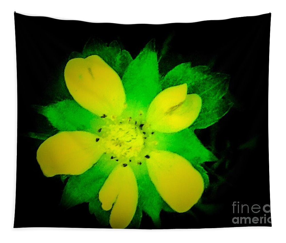 Wild Tapestry featuring the photograph Yellow Buttercup On Black Background by Debra Lynch