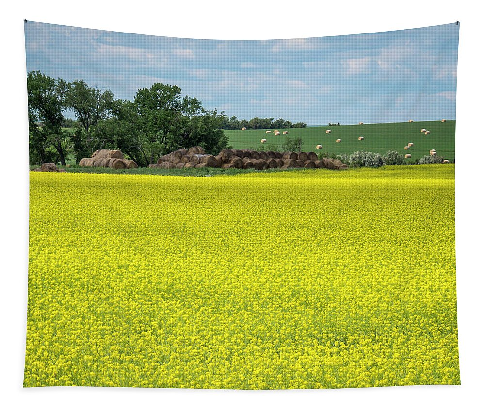 Field Tapestry featuring the photograph Yellow Canola Field by Patti Deters