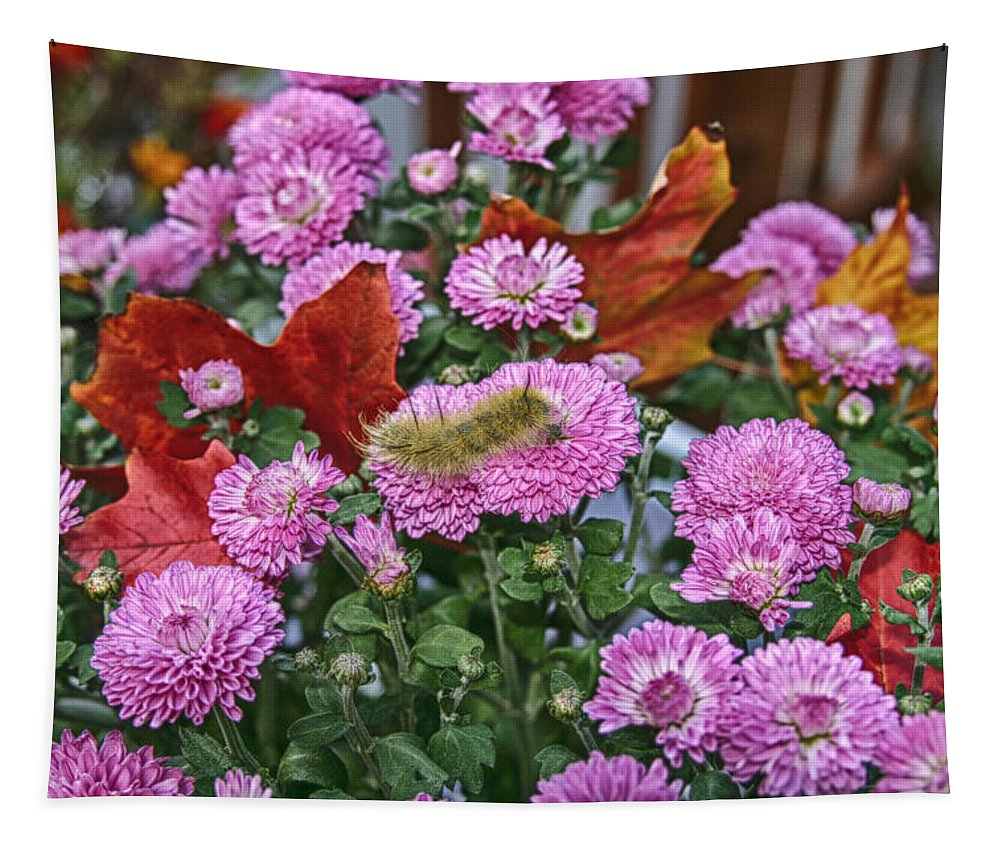 Flowers & Plants Tapestry featuring the photograph Yellow Caterpillar On Purple Mums by Jeff Folger