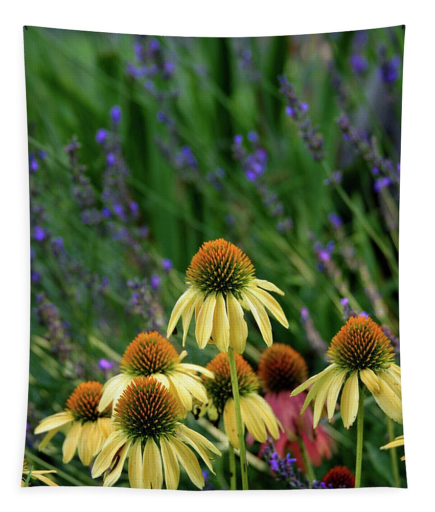 Yellow Coneflowers Tapestry featuring the photograph Yellow Coneflowers And Lavender 1633 H_2 by Steven Ward