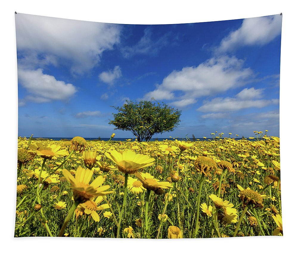 Outdoor Tapestry featuring the photograph Yellow Daisies by Stelios Kleanthous