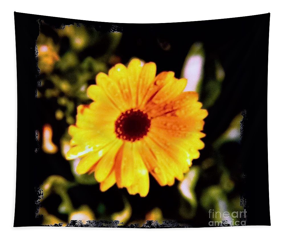 Yellow Tapestry featuring the photograph Yellow Flower With Rain Drops by Debra Lynch
