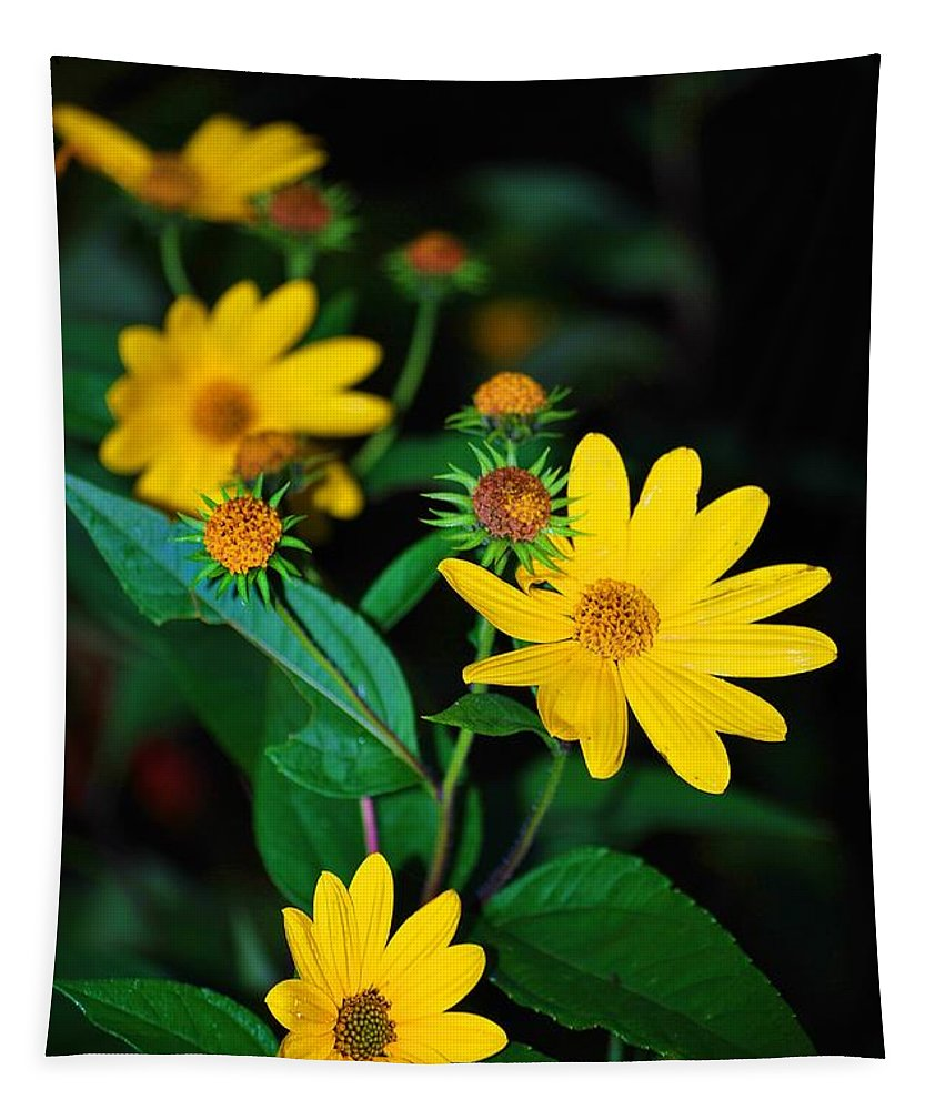 Yellow Flower Tapestry featuring the photograph Yellow Flowers by Carol J Deltoro