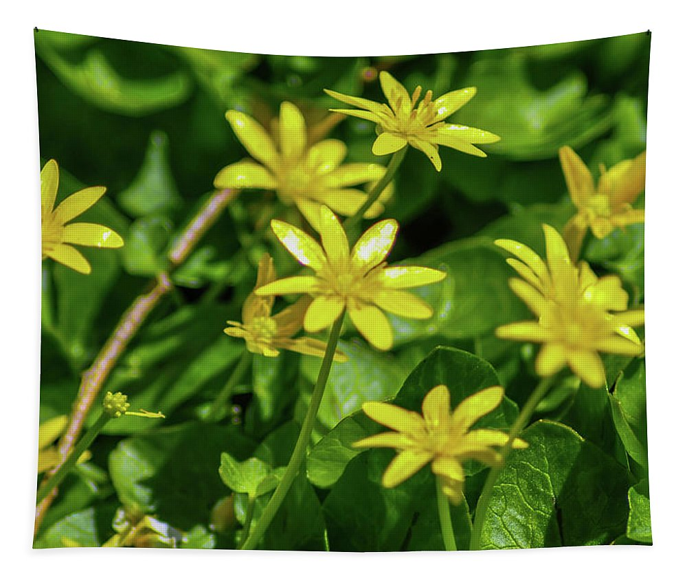 Yellow Tapestry featuring the photograph Yellow Flowers On A Green Carpet by Bill Cannon