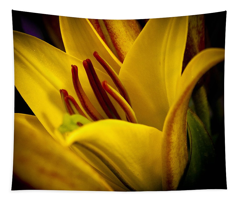 Lily Tapestry featuring the photograph Yellow Lily by David Patterson