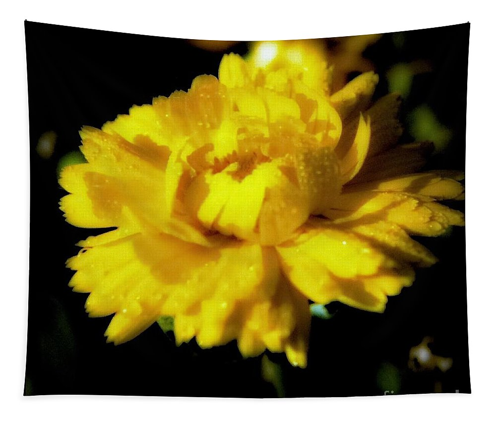 Mum Tapestry featuring the photograph Yellow Mum With Raindrops by Debra Lynch