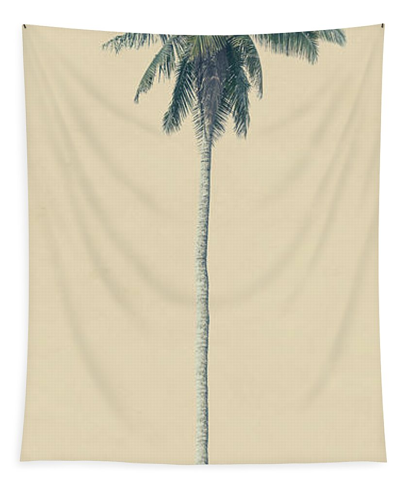 Palm Tapestry featuring the photograph Yellow Palm by Andrew Paranavitana