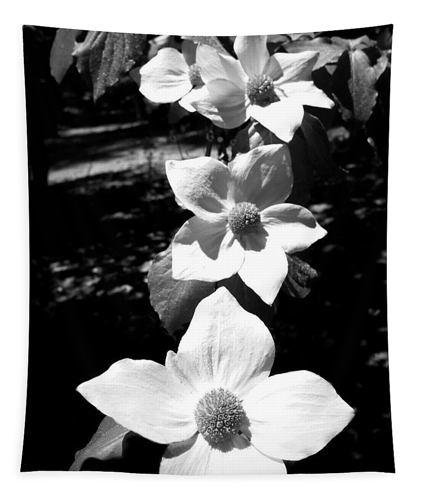 Dogwoods Tapestry featuring the photograph Yosemite Dogwoods Black And White by Joyce Dickens