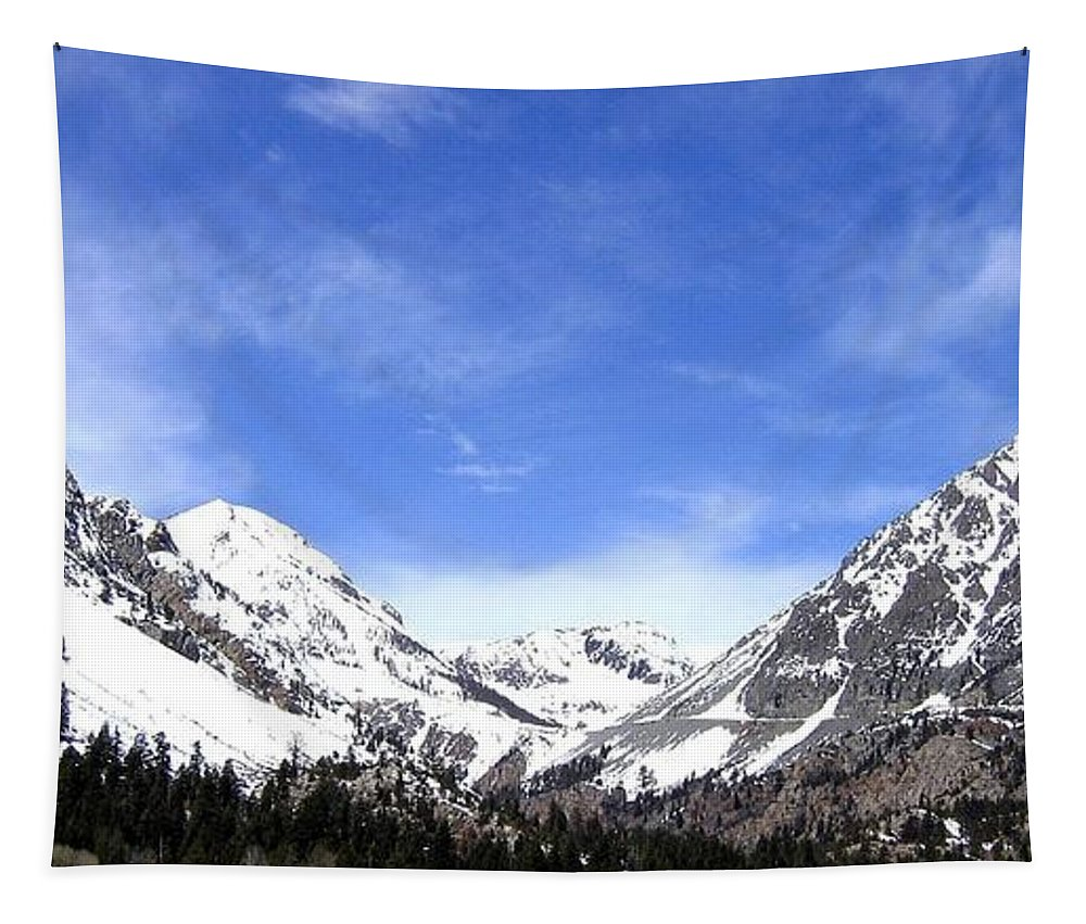 Yosemite Park Tapestry featuring the photograph Yosemite Park by Will Borden