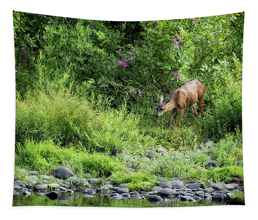 Doe Tapestry featuring the photograph Young Doe Among The Flora, No. 2 by Belinda Greb