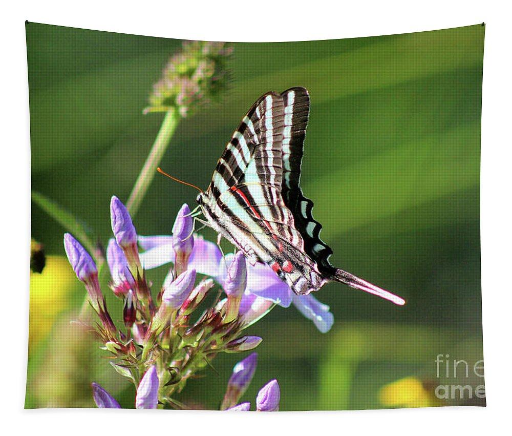 Zebra Tapestry featuring the photograph Zebra Swallowtail Butterfly On Phlox by Karen Adams