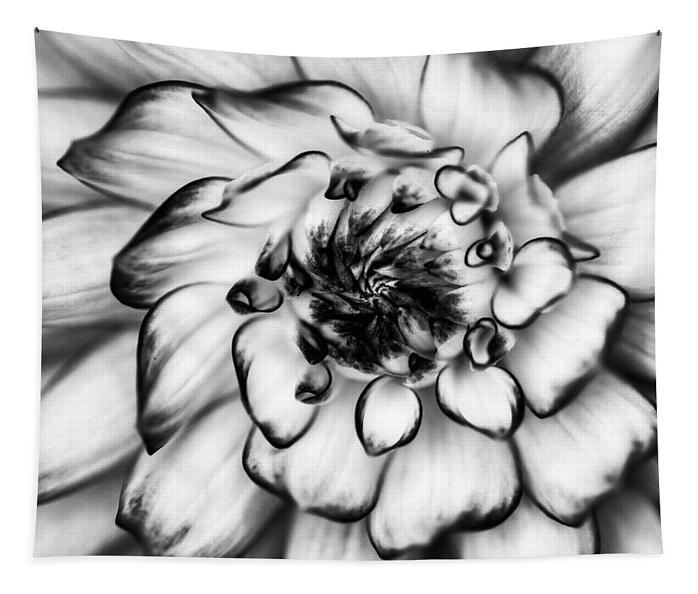 Zinnia Tapestry featuring the photograph Zinnia Close Up In Black And White by Mark Kiver