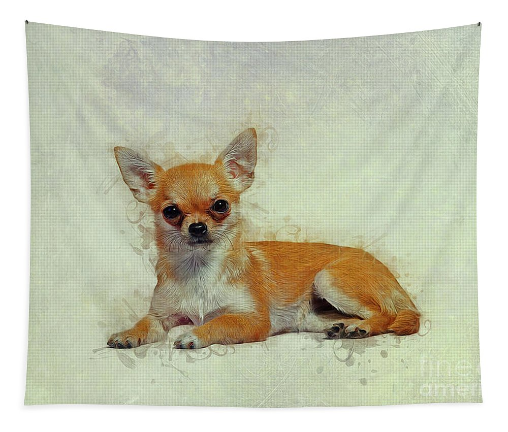 Chihuahua Tapestry featuring the drawing Chihuahua Art by Ian Mitchell