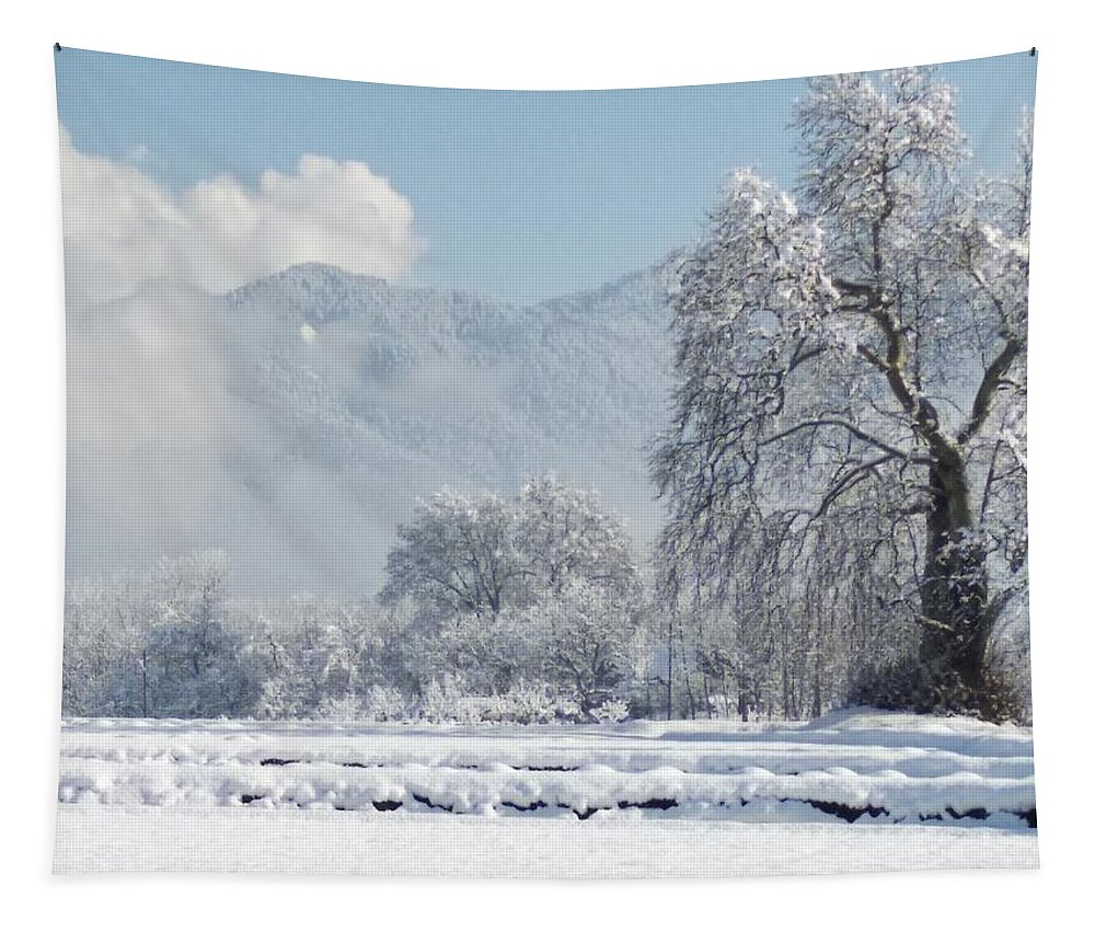 Tapestry featuring the photograph The Snow Story by Jacob