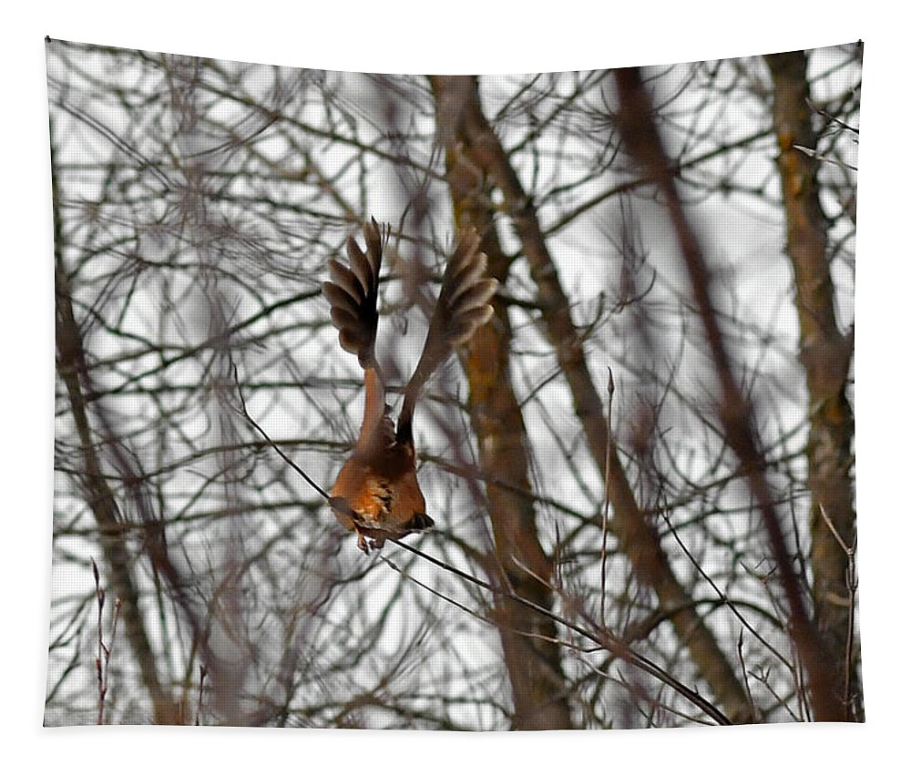 American Woodcock Tapestry featuring the photograph Wings by Asbed Iskedjian