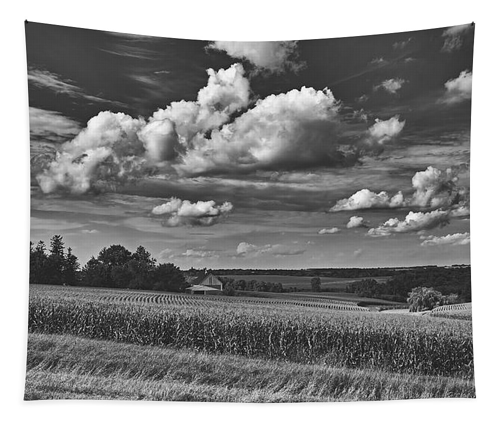 Iowa Tapestry featuring the photograph Beautiful Iowa Farm Scene by Mountain Dreams