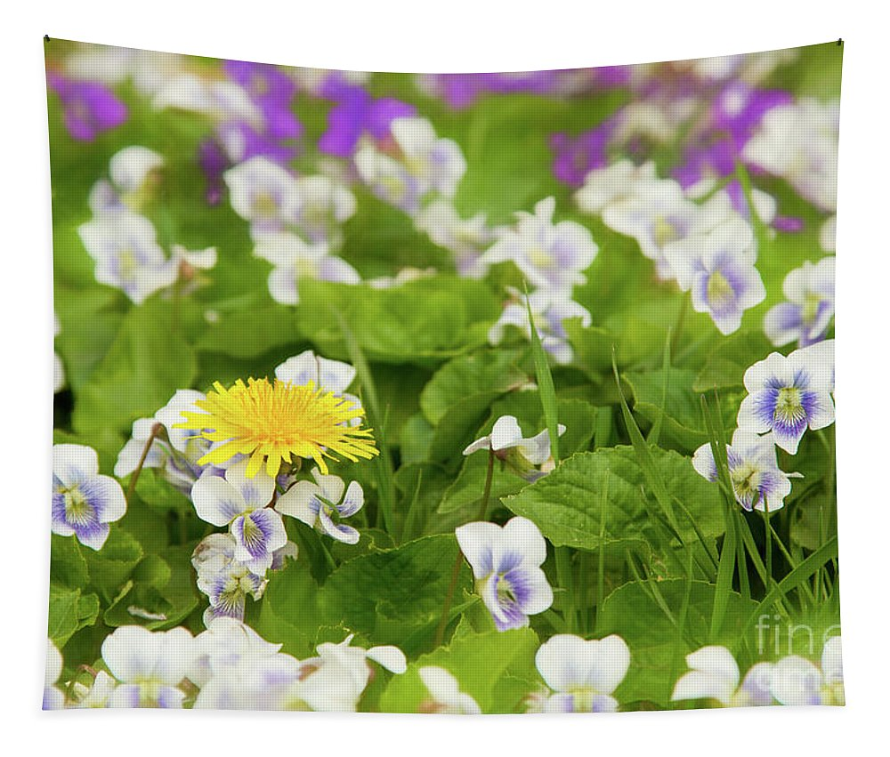 Dandelion Tapestry featuring the photograph I Choose Spring by Marilyn Cornwell