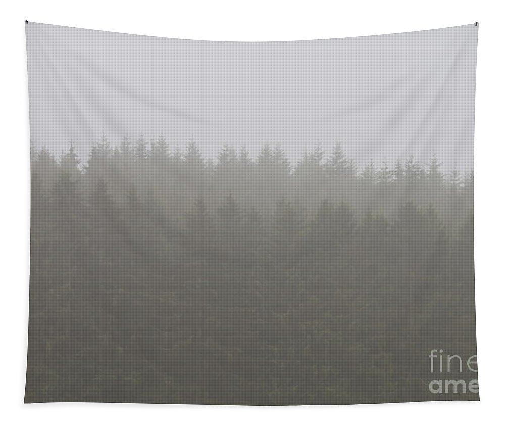 Weather Tapestry featuring the pyrography Pine Trees Perfectly Lined Up In The Mist. by Raymond De la Croix