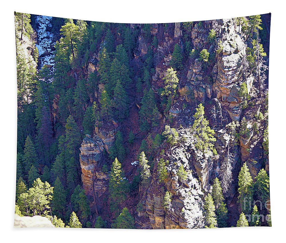 Landscape Tapestry featuring the photograph 2014 Valentine Mountain Trip by Darryl Treon