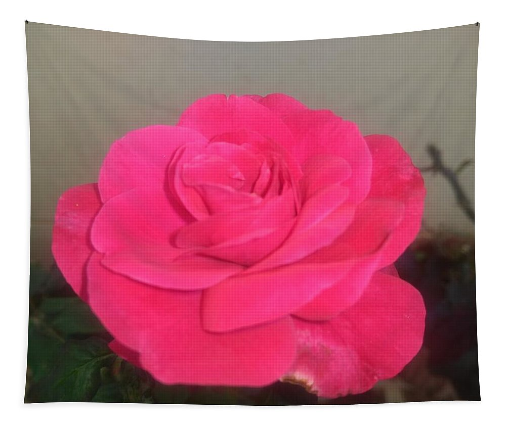 Tapestry featuring the photograph Pink Rose by Nimu Bajaj and Seema Devjani