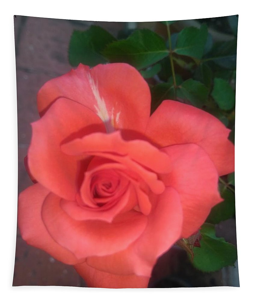 Tapestry featuring the photograph Orange Rose by Nimu Bajaj and Seema Devjani