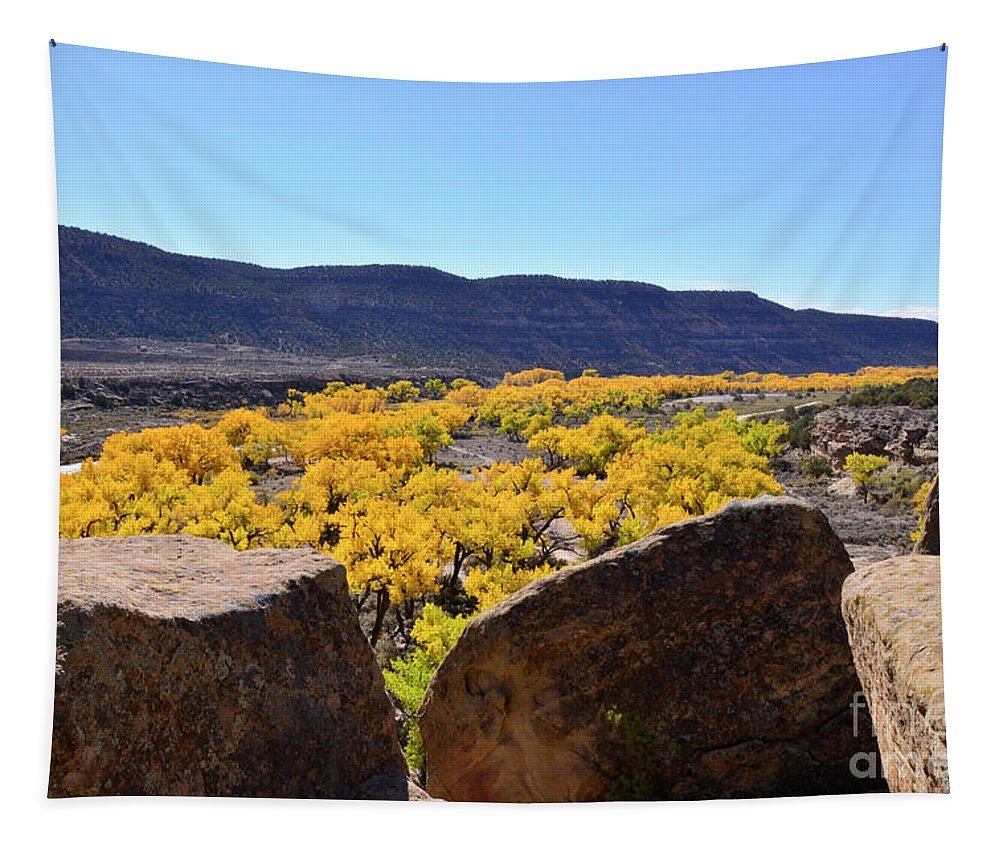 Desert Tapestry featuring the photograph Gorgeous View Of Golden Cottonwood Trees In Canyon by Brenda Landdeck