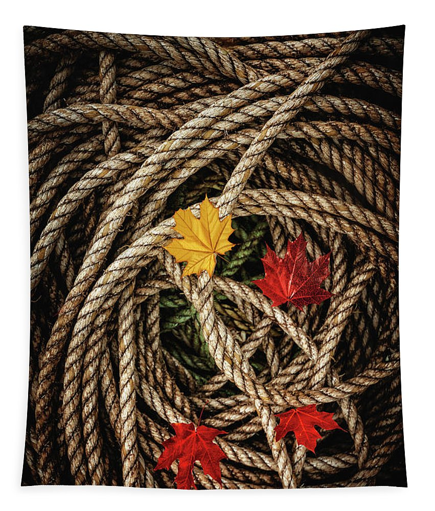 Kremsdorf Tapestry featuring the photograph All Falls Down by Evelina Kremsdorf