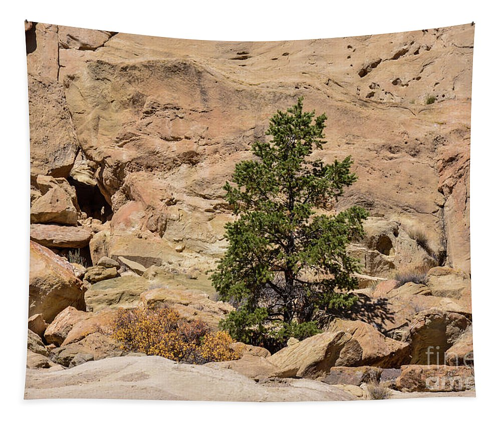 Amazing Tapestry featuring the photograph Amazing Life On The Sandstone Cliffs by Brenda Landdeck