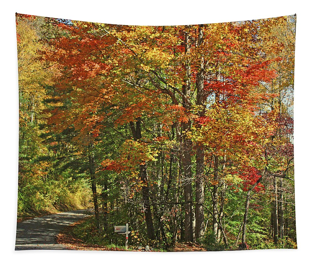Autumn In North Carolina Tapestry featuring the photograph Appalachian Backroads by HH Photography of Florida
