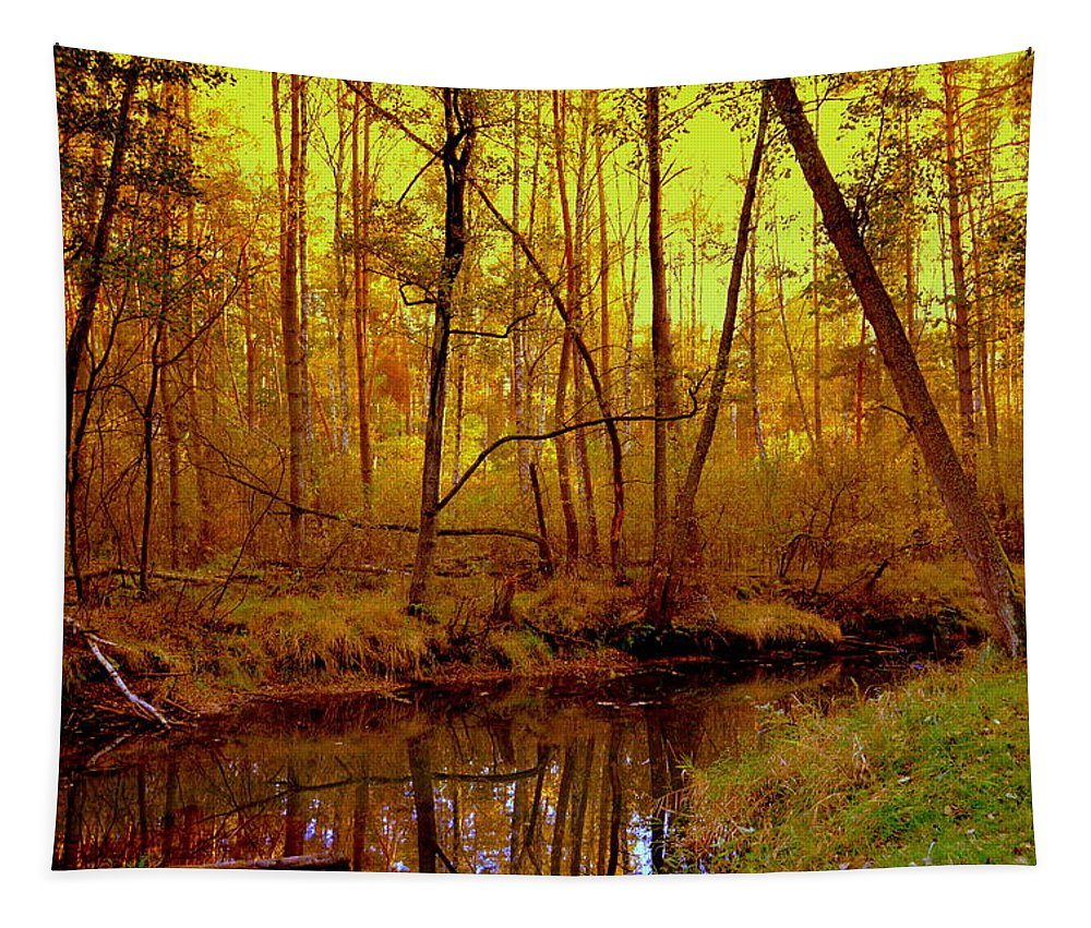 Henryk Tapestry featuring the photograph Autumn - Krasna River by Henryk Gorecki
