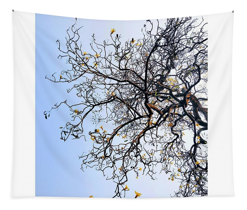 Autumn Tapestry featuring the photograph Autumn by Priya Hazra
