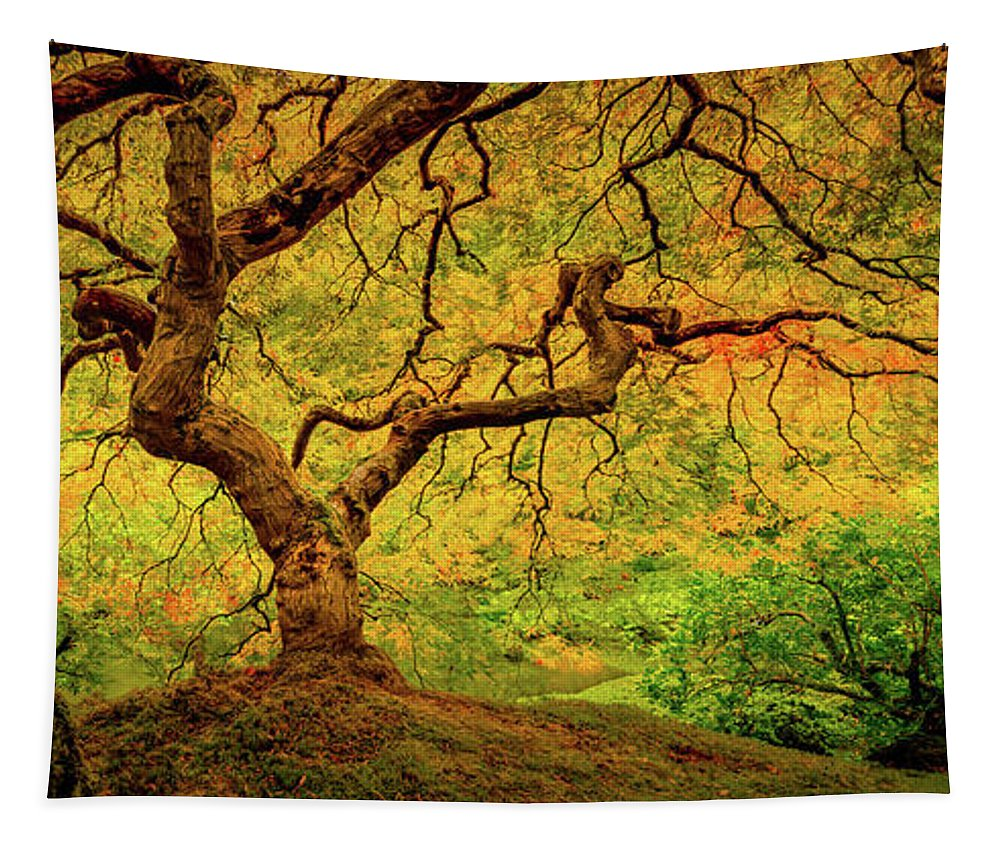 Autumn Colors Tapestry featuring the photograph Autumn's Palette by Don Schwartz