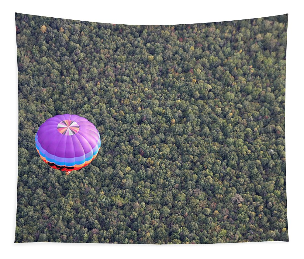 Hot Air Balloon Tapestry featuring the photograph Balloon Over Forest by Paul Tokarchuk