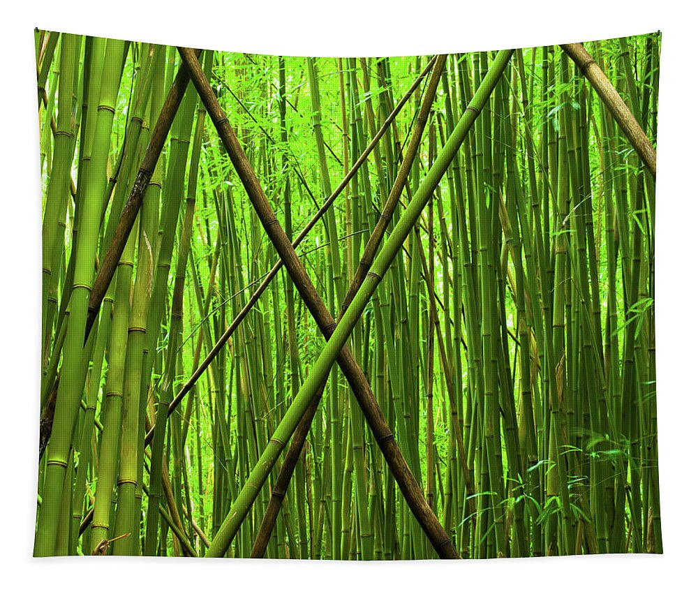 Maui Tapestry featuring the photograph Bamboo X by Christopher Johnson