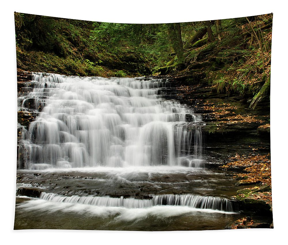 Waterfalls Tapestry featuring the photograph Beauty Falls Salt Springs State Park by Christina Rollo