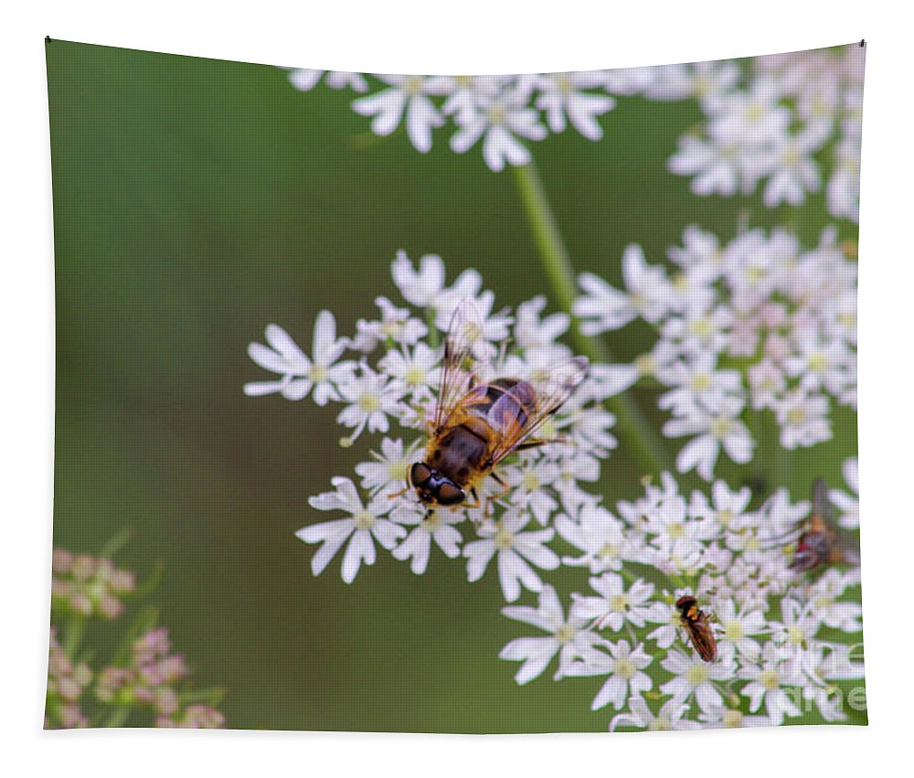 Bee Tapestry featuring the photograph Bee Relaxing On A Flower. by Raymond De la Croix