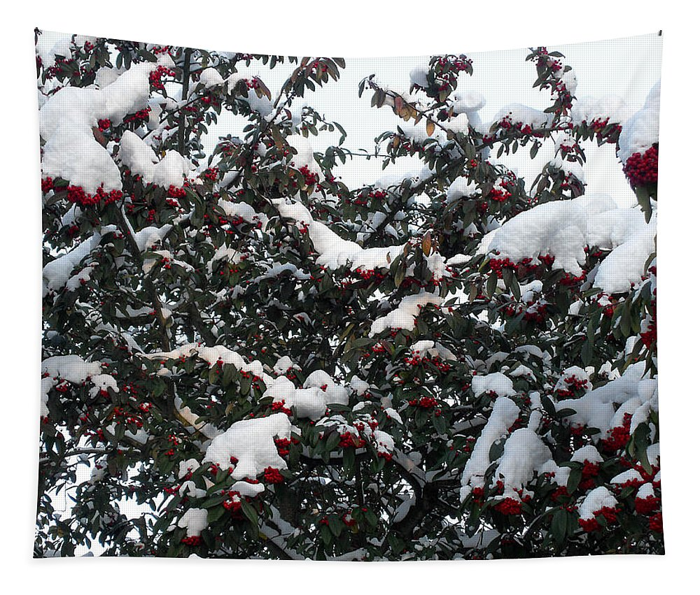 Christmas Tapestry featuring the photograph Berries And Snow by Patrick J Murphy